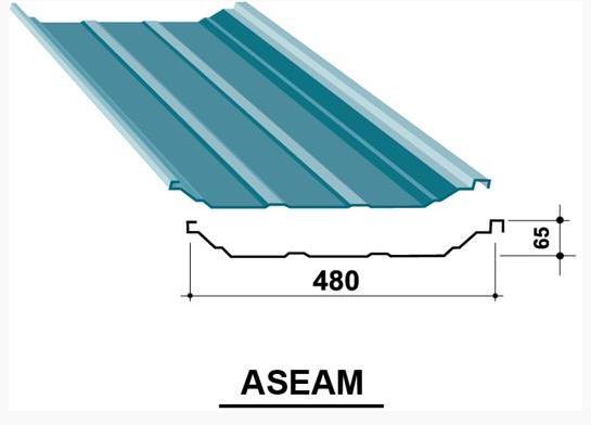 ASEAM480